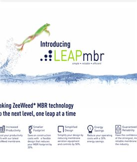 Introducing Leapmbr