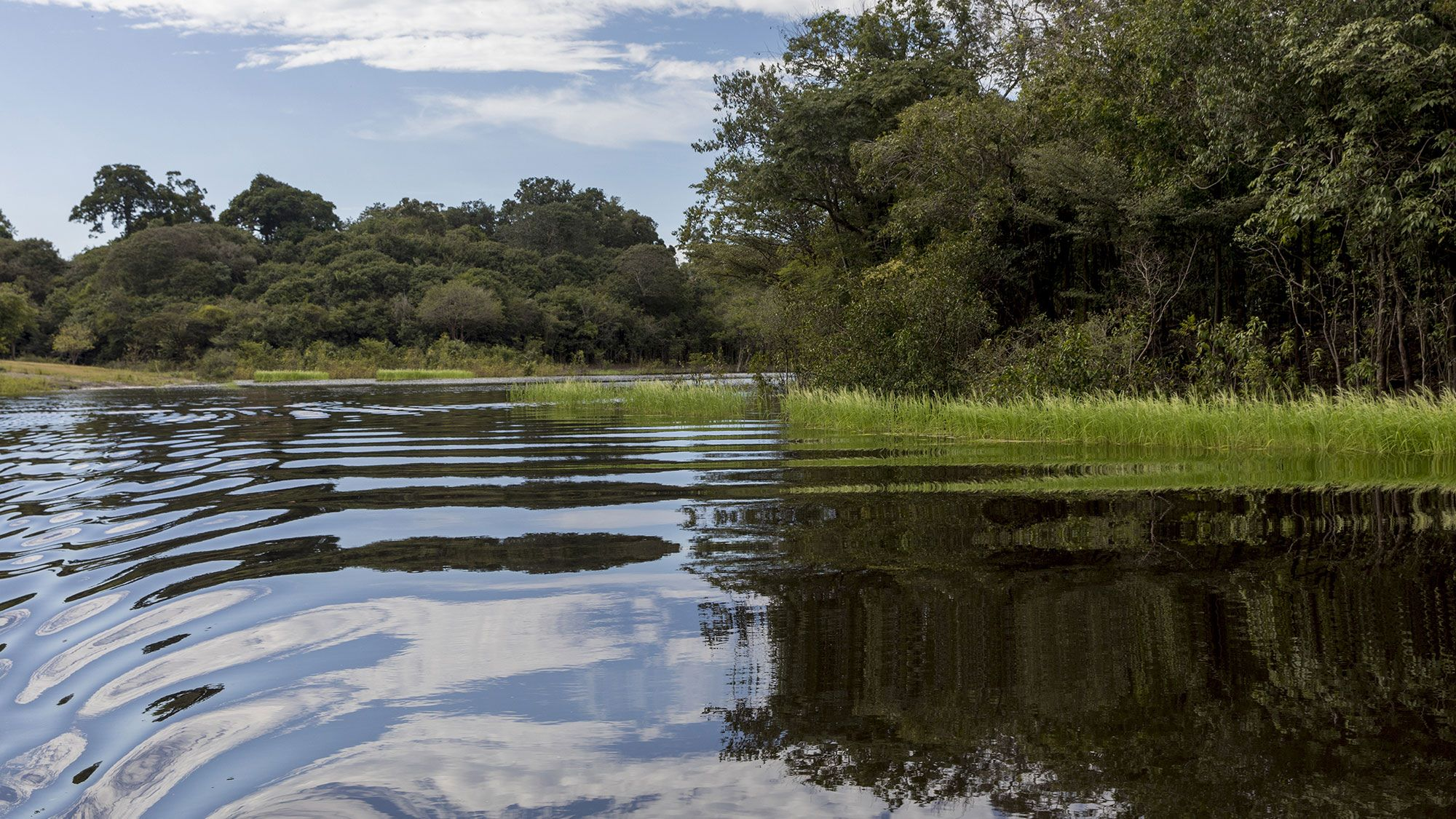 Water resources be conserved
