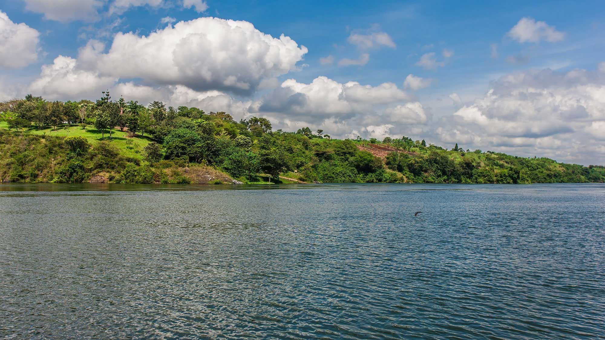 River Nile leaving Lake Victoria at Jinja Uganda Africa