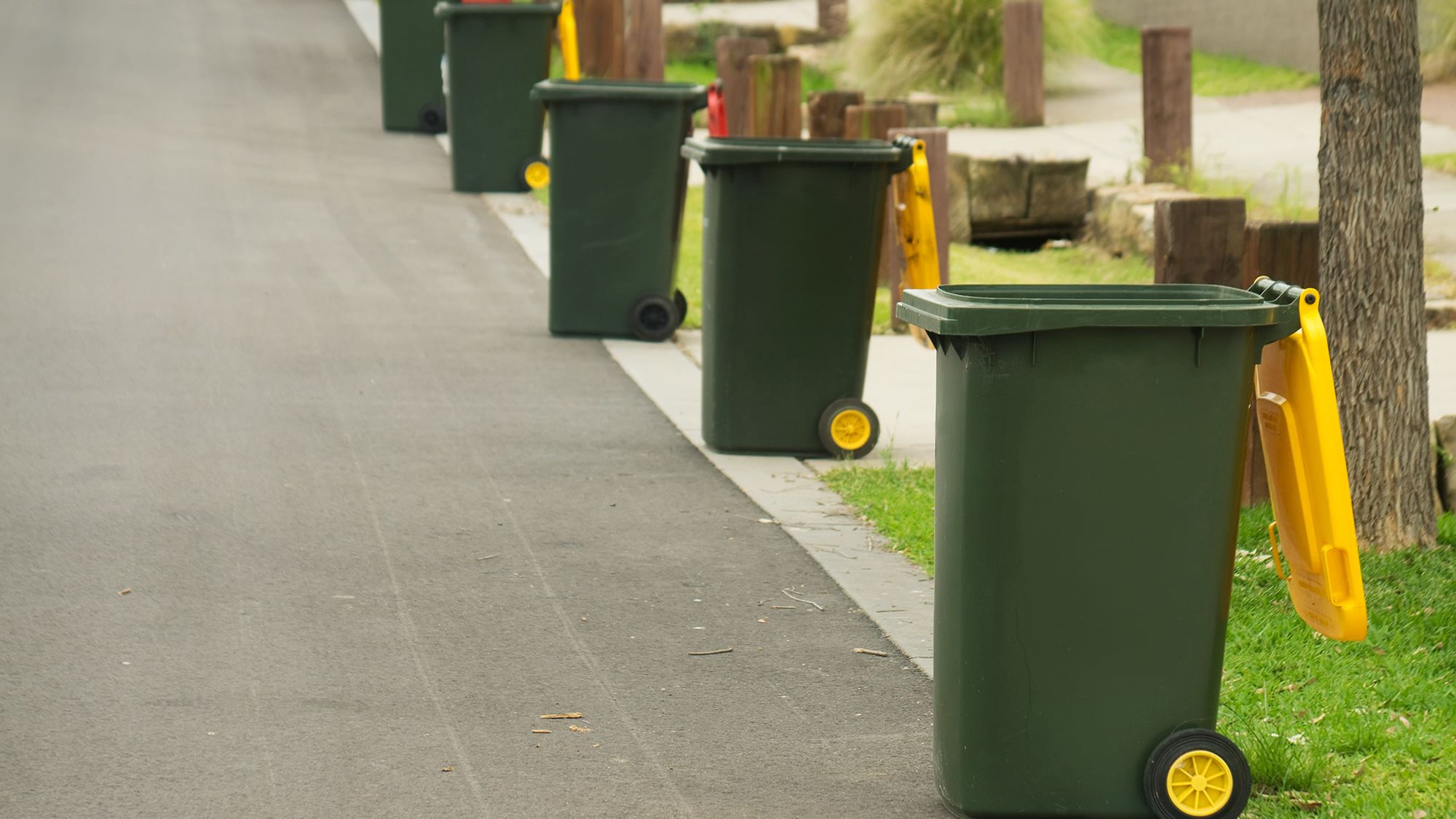 Yellow and red bins in front of homes
