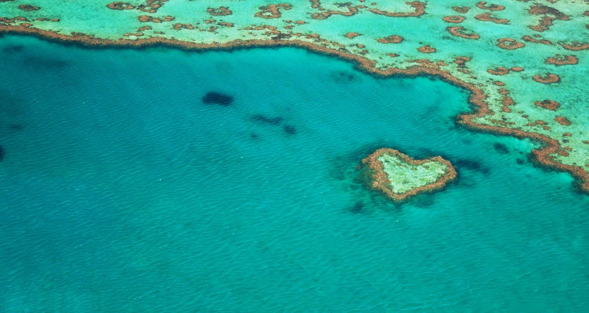 SUEZ_ANZ_News_NPS_heart-of-ocean
