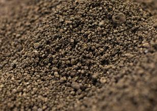 Soil decontamination