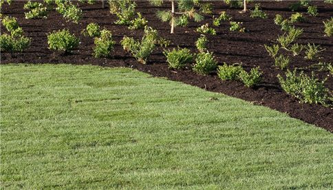 Compost used in landscape gardening