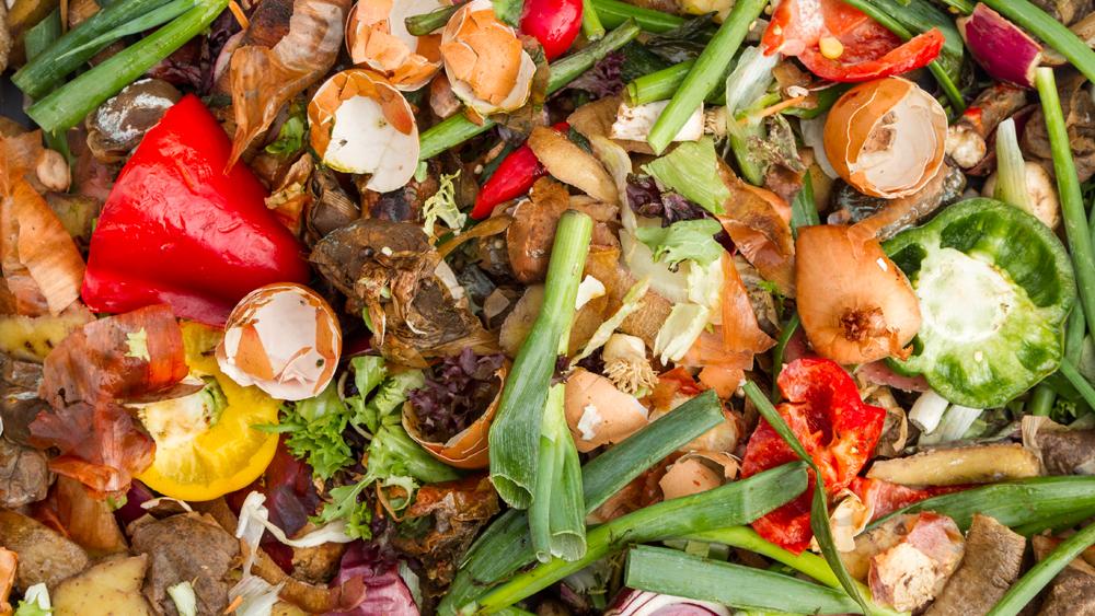 organics leftovers