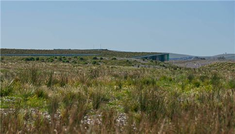 Image showing green roof and landscaping around desalination facility