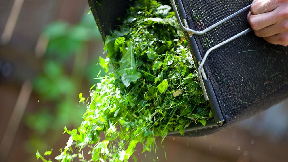 Tipping garden organics into bin