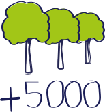 bomen 5000