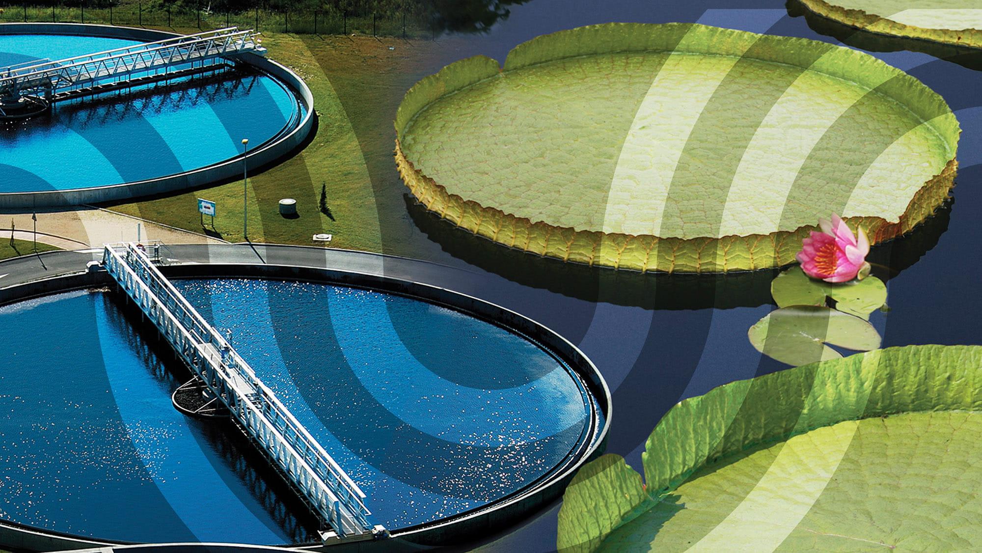 212 water managementout