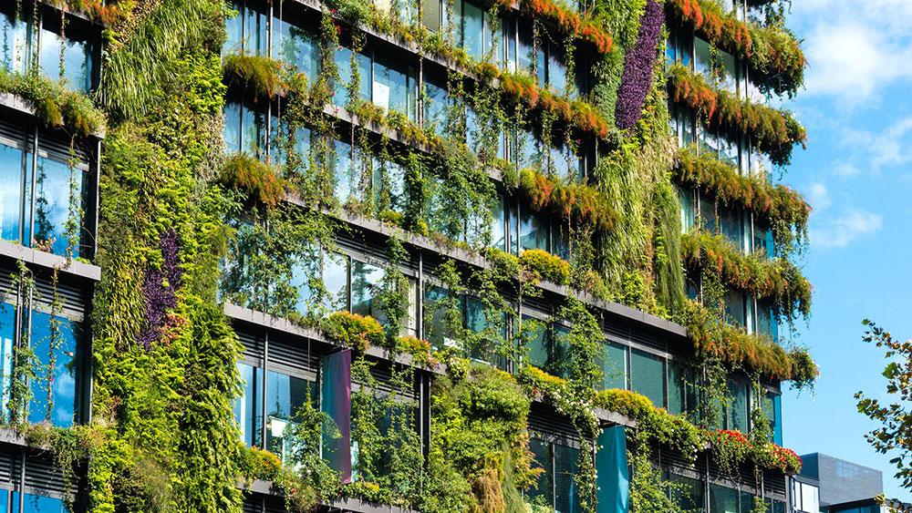 SUEZ Ciudades sostenibles inteligentes Media ambiente