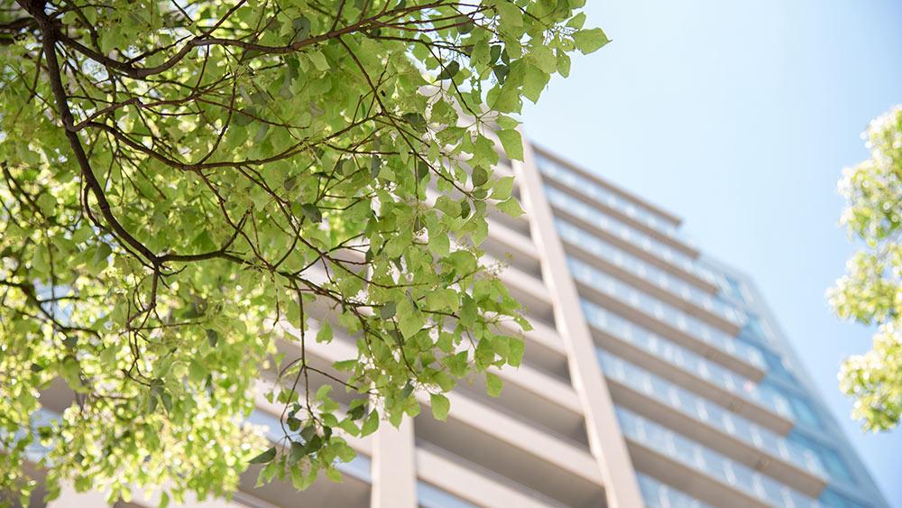 SUEZ Ciudades sostenibles inteligentes Medio ambiente 2