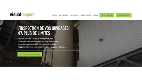 Visual Inspect web