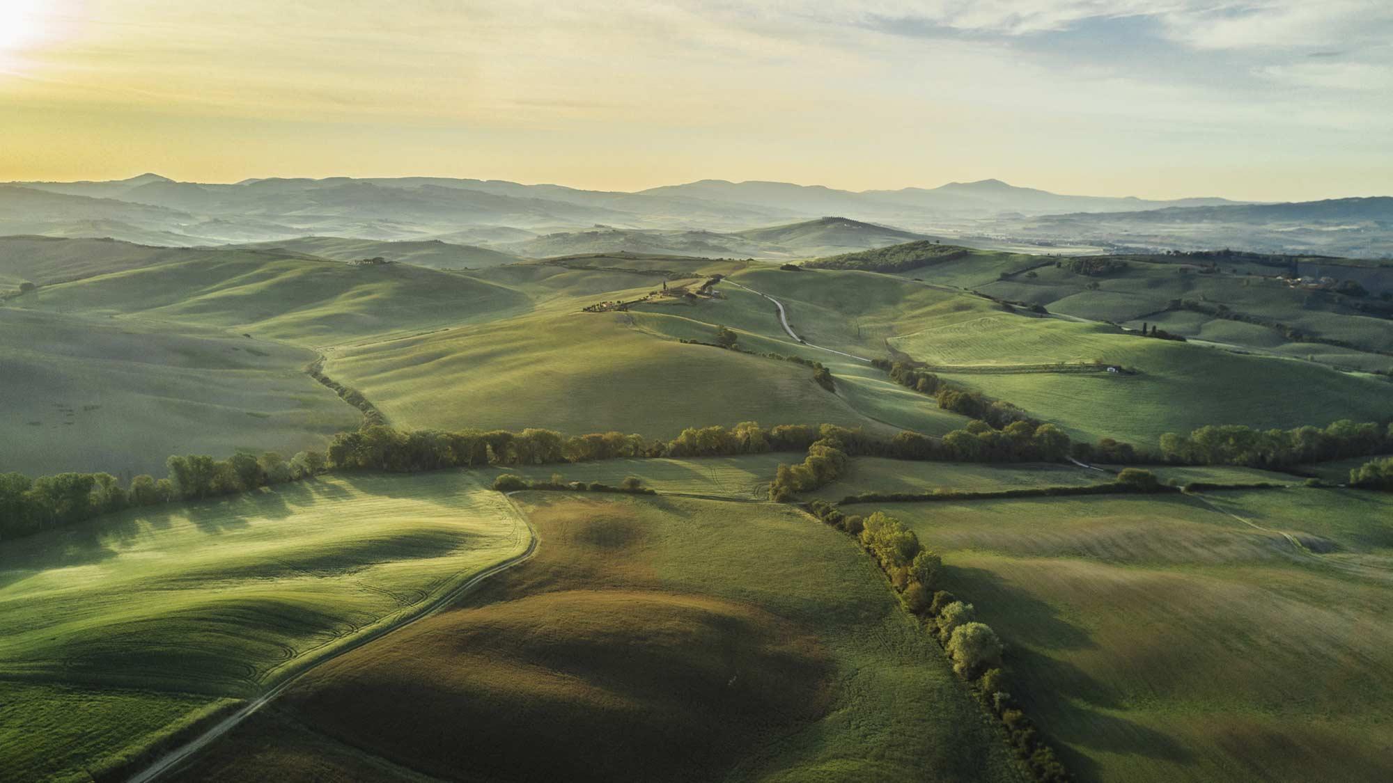 green landscape header