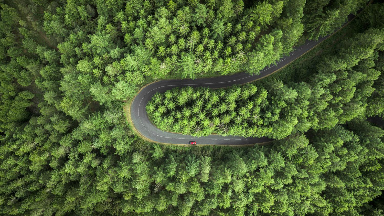 green vehicle path header