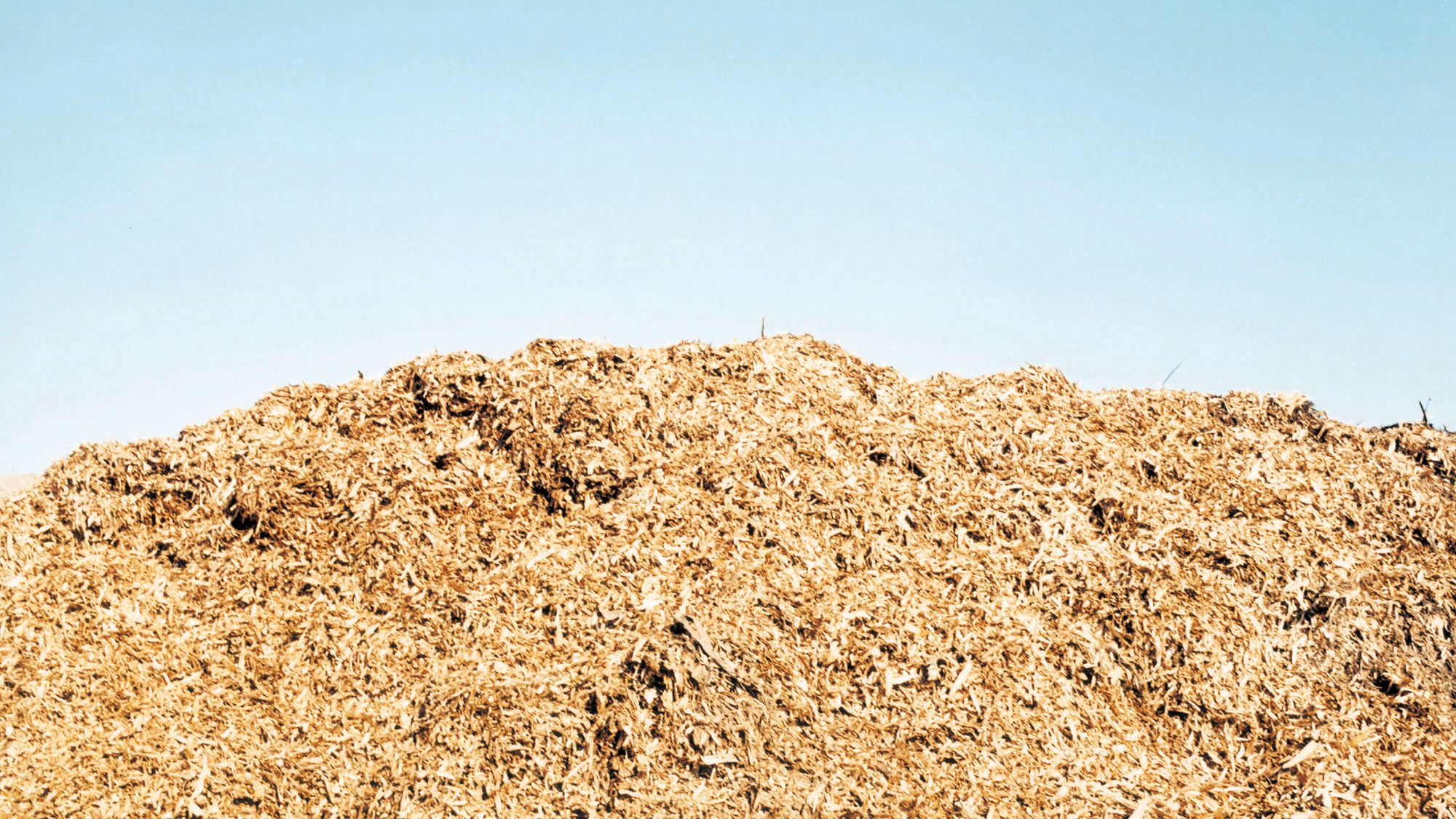Waste recycling and recovery