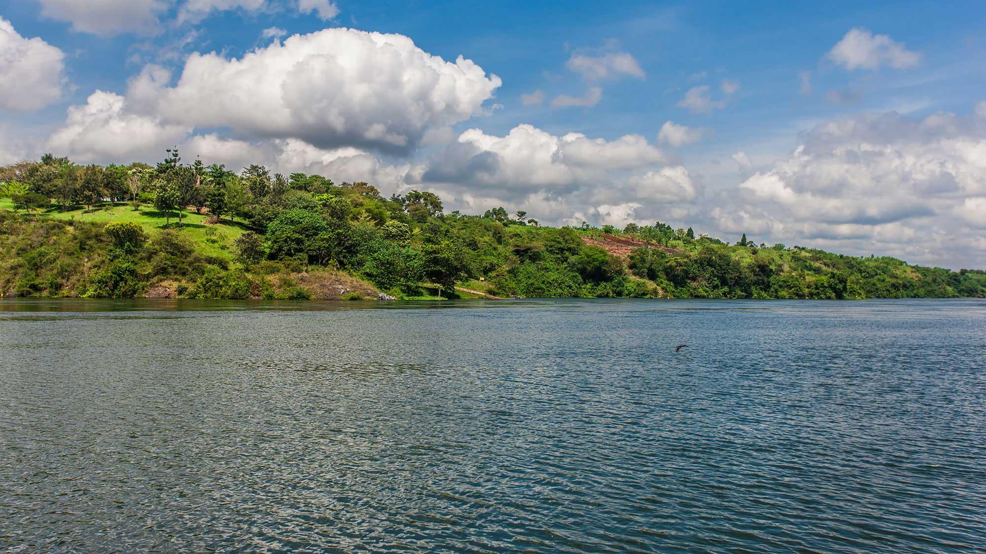 Le Nil quittant le Lac Victoria à Jinja en Ouganda