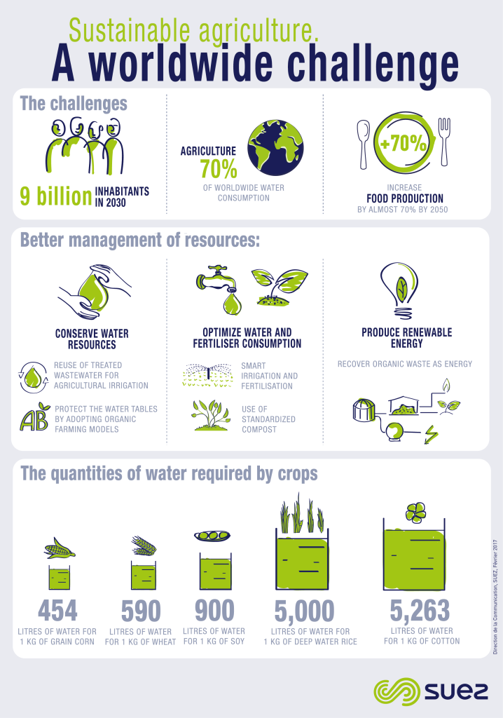A worldwide challenge infographie