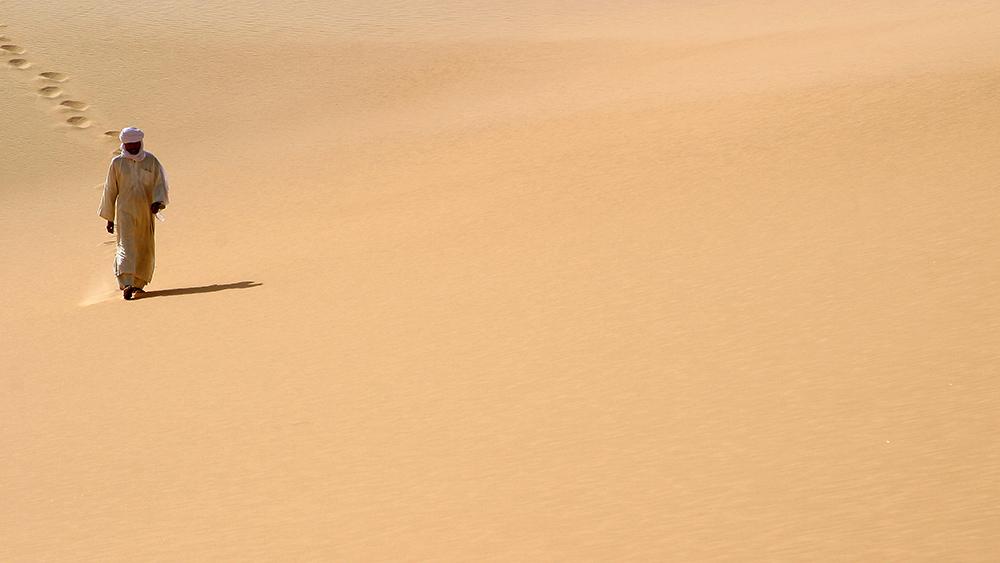 Niger Puits du Desert