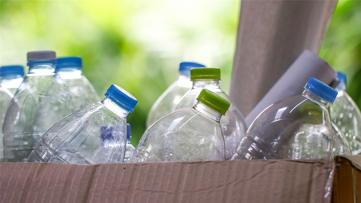 Plastic bottles in a cardboard box