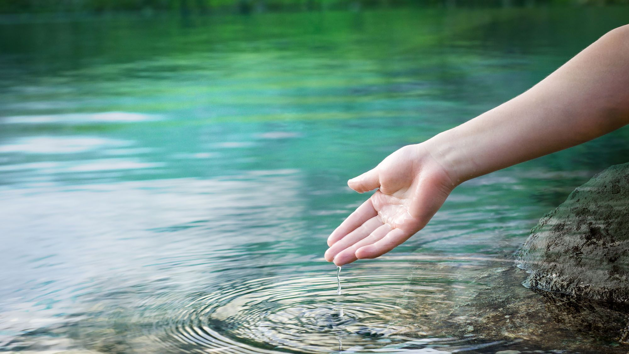 Water dropping from a hand in nature