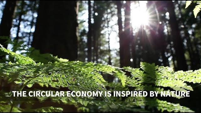 Welcome to the new era of Circular Economy! - 3rd edition of Solutions&Co